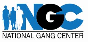 National Gang Center logo