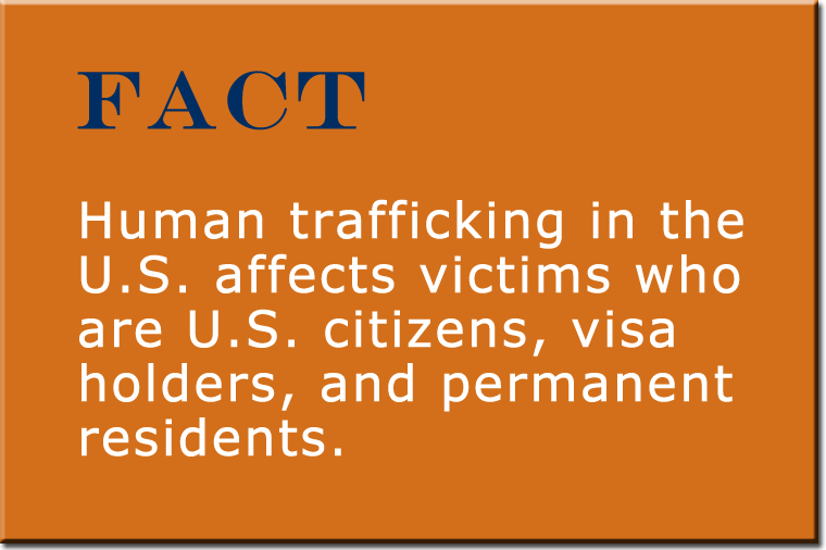 Human trafficking fact