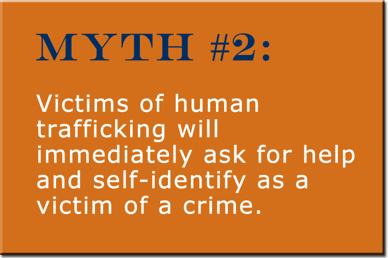 Human trafficking myth