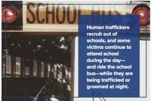 training-school-bus-drivers